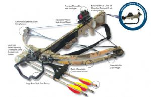 Cheetah Compound Crossbow Package Offer